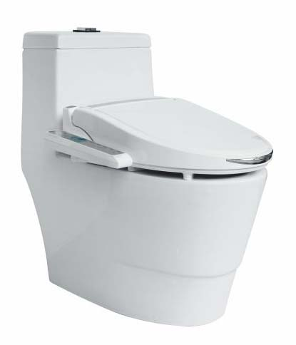 HB2100 Intelligent Electric Bidet